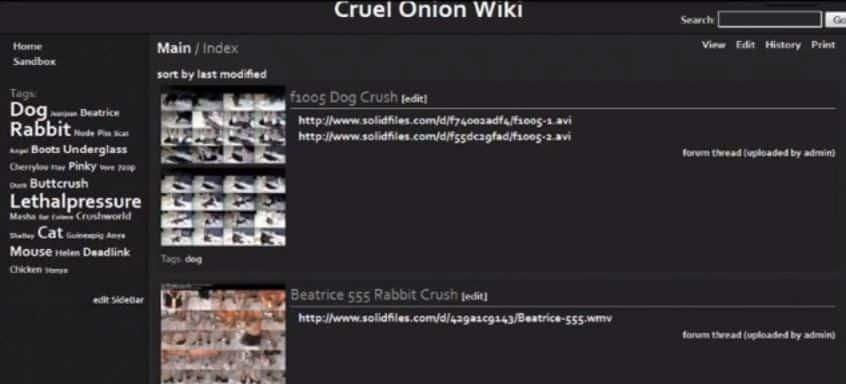 Cruel Onion Wiki Technastic