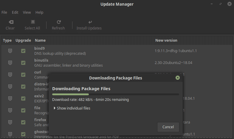 Linux Mint 19 update manager