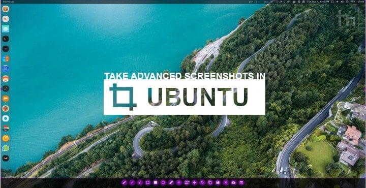 How to Take Screenshot on Ubuntu (Linux) Like a Pro | Technastic