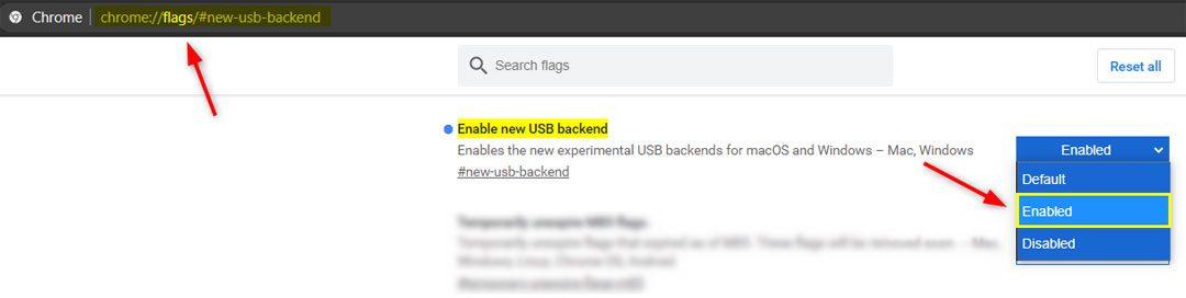 enable new usb backened chrome